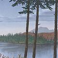 Pine Island by Peter Rashford