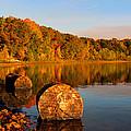Pine Lake Reflection 3 by David T Wilkinson