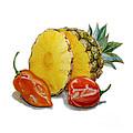 Pineapple And Habanero Peppers  by Irina Sztukowski