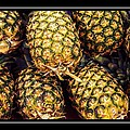 Pineapple Color by Alice Gipson