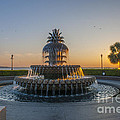 Magical Fountain by Dale Powell