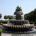 Pineapple Fountain Charleston River Park by Christiane Schulze Art And Photography