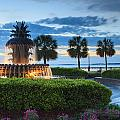 Pineapple Fountain Charleston South Carolina Sc by Carol VanDyke