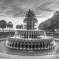 Pineapple Fountain In Black And White by Dale Powell