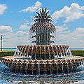 Pineapple Fountain by Sennie Pierson
