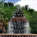 Pineapple Fountain by Skip Willits