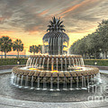 Pineapple Fountain Sunset by Dale Powell