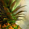 Pineapple II by David and Carol Kelly