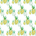 Pineapple by Pamela J.  Wingard