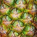 Pineapple Skin by Tikvah's Hope