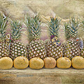 Pineapples And Grapefruit by TN Fairey