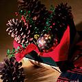Pinecones Christmasbox Painted by Iris Richardson