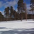 Pinetop Snowfall by Stan Scott