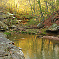 Piney Creek Reflections by Greg Matchick