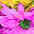 Pink And Green Flowers by LLaura Burge