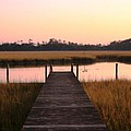 Pink And Orange Morning On The Marsh by Nadine Rippelmeyer