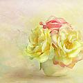 Pink And Yellow Roses by Theresa Tahara