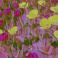 Pink And Yellow Tulips Pop Art by Dora Sofia Caputo Photographic Design and Fine Art