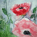 Pink Anemones by Marna Edwards Flavell