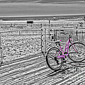 Pink Bicycle by Tom Gari Gallery-Three-Photography