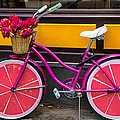 Pink Bike by Garry Gay
