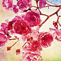 Pink Blossom - Watercolor Edition by Lilia D