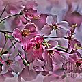 Pink Blossoms - Paint by Scott Hervieux