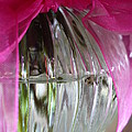 Pink Bowed Glass by Nicki Bennett