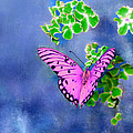 Pink Butterfly by Bruce Nutting