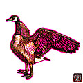 Pink Canada Goose Pop Art - 7585 - Wb by James Ahn