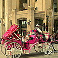 Pink Carriage Ride Through Historic Streets The Old City With Beautiful Dark Horse Quebec C Spandau by Carole Spandau