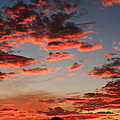 Pink Clouds by Catie Canetti