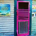 Pink Door by Debbi Granruth