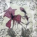 Pink Dragonfly Flora by Jeanne Ward