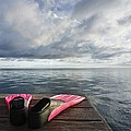 Pink Fins On Dock by M Swiet Productions