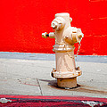 Pink Fire Hydrant by Art Block Collections