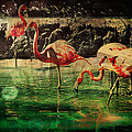 Pink Flamingos - Shangri-la by Absinthe Art By Michelle LeAnn Scott