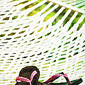 Pink Flip Flops On Backyard Rope Hammock Vintage Scratched Style by Marianne Campolongo