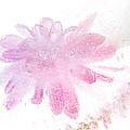 Pink Float by Zina Zinchik