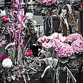 Pink Flower Arrangements by Elena Elisseeva