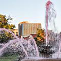 Pink Fountain For Breast Cancer by Terri Morris