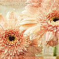 Pink Gerber Daisies 3 by Andee Design