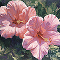 Pink Hibiscus by Laurie Snow Hein