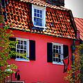 Pink House Gallery On Cobblestone Street In Charleston by Susanne Van Hulst