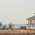 Pink House On The Marsh by K Hines