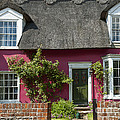 Pink House by Svetlana Sewell