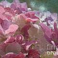 Pink Hydrangea Photoart I by Debbie Portwood