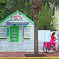 Pink Lady And The Conch Shop  by Rebecca Korpita