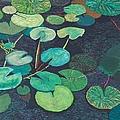 Pink Lilies by Allan P Friedlander