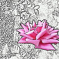 Pink by Lovina Wright